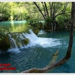 800px-Plitvice_Lakes_National_Park_4